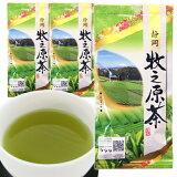 セール 2020年度産 5割増量2本+1本 牧之原茶100g×3本 日本茶 煎茶 緑茶 深蒸し茶 静岡茶 ポスト投函便送料無料