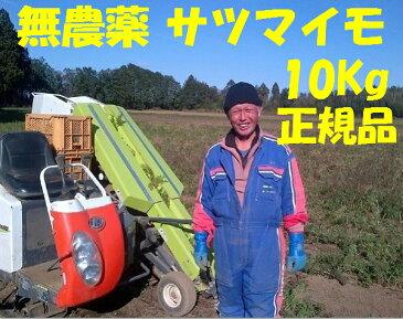 さつまいも 10Kg サツマイモ10kg A級品 送料無料 無農薬100%規格芋 にんじん 無農薬で人気の【特別栽培芋】さつまいも送料無料 有機20年の加瀬農園