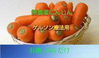 人参/にんじんジュース【無農薬洗いにんじん】【送料無料】B級