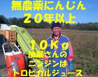 無農薬人参10キロ【無農薬・無化学肥料】人参無農薬10kg