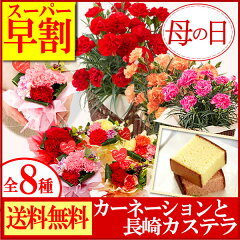 【スーパー早割】母の日ギフト【長崎カステラ】 カーネーションセット【送料無料・込】 MD400