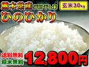 【もれなくふりかけプレゼント!!】熊本のおいしいお米が届きました♪熊本県産 ひのひかり【送料無料】【選べる精米(無料)】【平成24年度米】【玄米】【30kg】【九州の米】