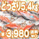 【送料無料】【レンジで3分♪冷凍石焼いも5.4キロ(18袋)】長崎五島列島福江島産の安心安全なごといも(化学肥料・農薬は一切使用していません)使用。ねっとりあま〜い天然スイーツです!