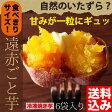 ●送料込み 遠赤ごと芋 食べきりサイズ6袋セット(180g×6袋)※お一人様1個限【10P01Oct16】