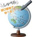 レイメイ しゃべる地球儀 国旗付き スタンダード 20cm OYV46