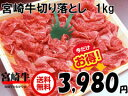 前沢牛 ビーフシチュー 3食分 レトルト 岩手県産 黒毛和牛 前沢牛オガタ【送料無料】