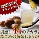 しょうが(生姜)粉末鹿児島産 黄金しょうが粉末 70g生姜 | ジンジャー | パウダー国産 |