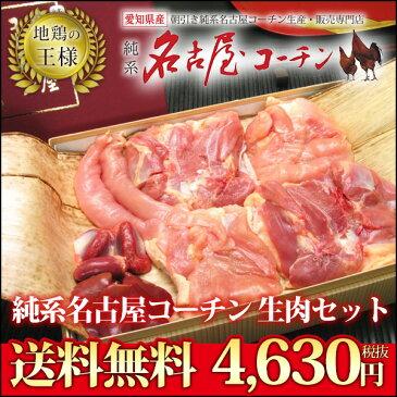 送料無料 純系名古屋コーチン 生肉セット 鶏肉 ギフト 楽ギフ_包装 楽ギフ_のし 地鶏 冷蔵 生肉セット