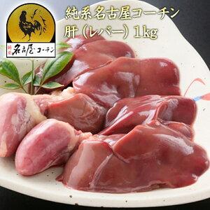 純系名古屋コーチン 肝(レバー) 1kg 地鶏 新鮮朝引きの純系名古屋コーチン 肝をお得なパックにしました。!鶏肉【冷蔵】【キモセット】