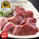 冷凍 純系名古屋コーチン肝(レバー) 2kg×6パック 朝引き 地鶏 冷蔵 モモセット 焼き鳥 業務用