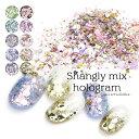ネイルアート シャングリーmixホログラム 全10色 約1.5g入り  おうち時間 フットネイル その1