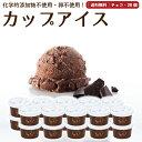 プレゼント ギフト アイスクリーム 20個 チョコレート 送料無料 卵不使用 無添加 詰め合わせ スイーツ グラスフェッド 有機 お取り寄せ 送料込み [冷凍] gift