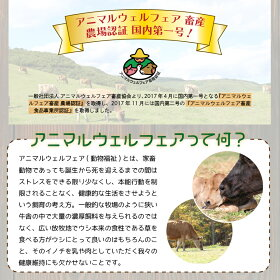 中洞牧場ドリンクヨーグルト加糖(アガベシロップ)〔500ml〕
