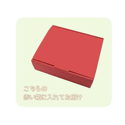 箱サンプル