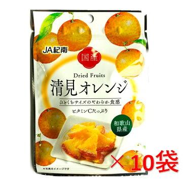 和歌山県JA紀南 ドライフルーツ清見オレンジ 20g×10袋