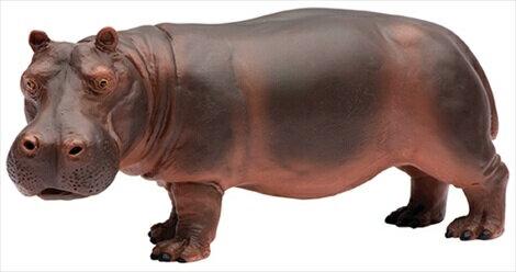 コレクション, フィギュア safari 270429