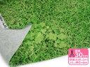 リアルな芝生プリントところどころに四つ葉のクローバーも【ぷらんぷ ちぃくす×kokka】芝生で...