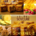 【送料無料】 『大麦と果実のソイキューブ』...