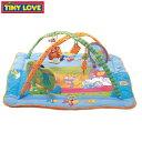 【送料無料!】TINY LOVE(タイニーラブ)プレイマット(ジム)ジミニー・トータルプレイグランド〈...