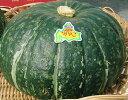 【期日指定可】割烹をうならせた栗かぼちゃの最高峰!!秀品大浜みやこかぼちゃ大玉約1.6kg 1玉