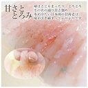 [冷蔵]極上 甘エビ寿司を福井から【中サイズ】届いたその日が旬の味わい[生鯖寿司お取り寄せの萩]プレゼントに! 3