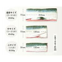[冷蔵]極厚福井の漬け生さば寿司/届いたその日が旬の味わい/たっぷり約3人前[生鯖寿司の萩]
