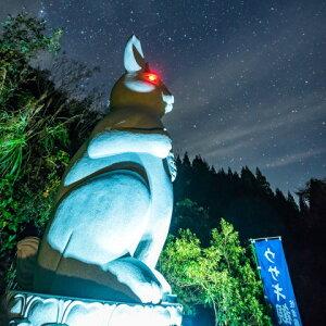 ウサギ観音(夜)写真提供:佐渡の旅館ご縁の宿伊藤屋