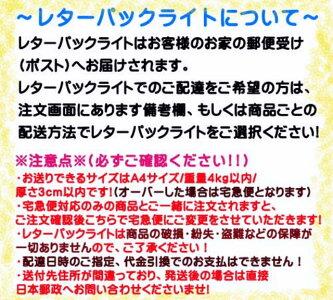 耐震診断ができる、わかる「耐震補強マニュアル」(レターパックライト可!!)