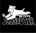 デザイン ドッグ ステッカー 白いミニチュアシュナウザー!!【ホワイトシュナウザー】【W265×H160】 その1
