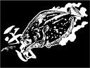 【ヒラメ】防水 ステッカー迫力の 魚 ステッカー (転写タイプ)H140 × W320