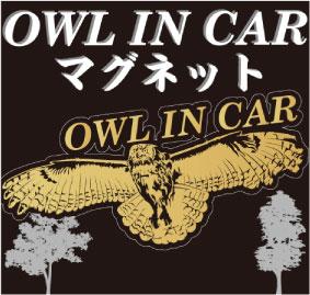 ふくろうマグネット ステッカー 車 ステッカー ふくろう フクロウ マグネット ステッカー 車 猛禽類 ふくろう グッズ みみずく ユーラシアワシミミズク ミミズク 梟 OWL 鳥 かっこいい 防水 車 はやぶさ 隼 猛禽類