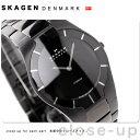 [新品][1年保証][送料無料]スカーゲン SKAGEN 腕時計 ブラックレーベル チタン メンズ オールブ...