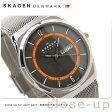 スカーゲン 腕時計 メンズ チタニウム デイデイト グレー SKAGEN SKW6007【あす楽対応】