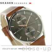 スカーゲン ホルスト マルチファンクション メンズ 腕時計 SKW6086 SKAGEN クオーツ グレー×ブラウン【あす楽対応】