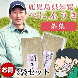 エコファーマー認定農家が生産!べにふうき、緑茶 普通のお茶感覚で簡単に作れます。鹿児島茶...