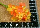 カスミ草 オレンジ 10輪