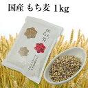【令和元年6月 新麦】国産 もち麦 1kg 国内産 雑穀米に もちむぎで脱メタボ 食物繊維 食品 も...