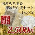 1kg×2個 国産 もち麦&押はだか麦 大麦 食べ比べセット 100% 愛媛県産【メール便送料無料】