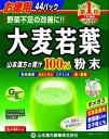 【オススメ】山本漢方製薬 大麦若葉100%粉末3gx44パック【最大400円オフ クーポンキャンペーン】