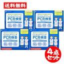 [宅配便]にしたんクリニック【PCR検査 4点セット】 日本
