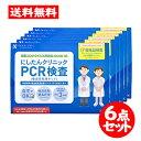 [宅配便]にしたんクリニック【PCR検査 6点セット】 日本