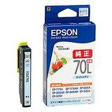 エプソン ICLC70L カラリオプリンター用 インクカートリッジ 目安在庫=○