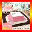 【S】カジュアルホワイトこたつ【-Soneca-ソネカ(正方形・70cm幅)】(こたつテーブル+掛布団の2点セット)