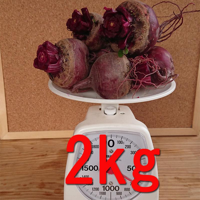 『高糖度ビーツ(葉付き)2kg』農薬不使用! 千葉県南房総市産 !★発送当日に収穫!!