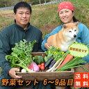 送料無料!『農家直送!南房総の豊かな土壌で育った野菜セット(...