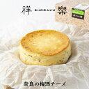 梅酒の実チーズケーキ