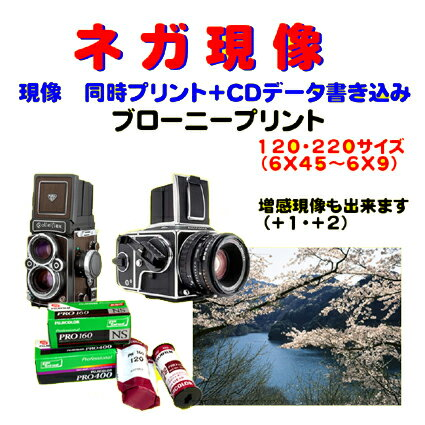 カメラ・ビデオカメラ・光学機器用アクセサリー, カメラ用フィルム  HASSELBLAD ZENZABRONICA Mamiya PENTAX Yashica 120 220 1