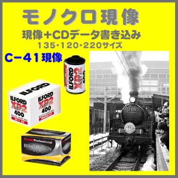 モノクロフィルム モノクロ現像+CDデータ書き込み  FUJI  Kodak ILFORD XP2  モノクロ現像 135 120  1本から受付