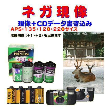 カメラ・ビデオカメラ・光学機器用アクセサリー, カメラ用フィルム  CD HASSELBLAD ZENZABRONICA Mamiya PENTAX Yashica OK 135 APS 120 220 1