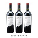 [3本まとめ買い] アンデルーナ マルベック 2019年 アンデルーナ セラーズ アルゼンチン 赤ワイン フルボディ アルゼンチンワイン メンドーサ アルゼンチン赤ワイン マルベック 750ml